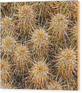 Spiny Prickly Sharp Wood Print