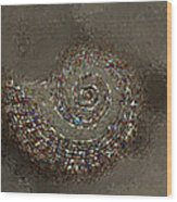 Spiral Textures Wood Print