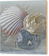 Spirit Of The Sea - Seashells And Surf Wood Print