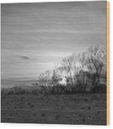 Spirit Trees Sparkle Wood Print