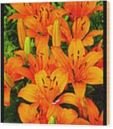 Spiritual Bouquets At St. Francis Cathedral Wood Print