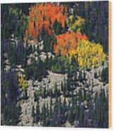 Splashes Of Fall Wood Print
