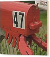 Sponge Bob's Mail Box  Wood Print
