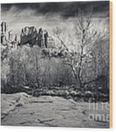 Spooky Castle Rock Wood Print by Darcy Michaelchuk