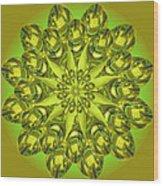 Spoonz Wood Print by Linda Pope