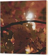 Spotlight On Fall Wood Print