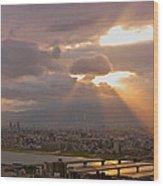 Spotlight On Osaka Wood Print