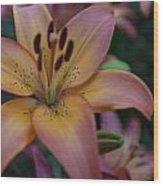 Spotty Lily Wood Print
