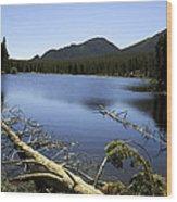 Sprague Lake Rocky Mountain National Park Wood Print