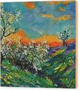 Spring 672101 Wood Print