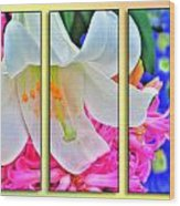 Spring Again Triptych Series Wood Print