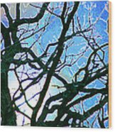 Spring Approaches Wood Print
