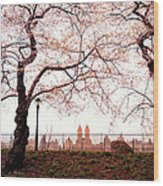 Spring Cherry Blossoms - Central Park Reservoir Wood Print by Vivienne Gucwa