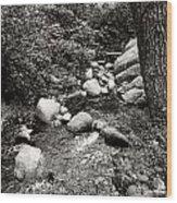 Spring Creek II Wood Print