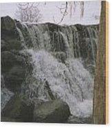 Spring Falls Wood Print