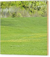 Spring Farm Landscape In Maine Wood Print