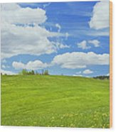 Spring Farm Landscape With Blue Sky In Maine Wood Print
