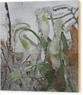 Spring Flowers In Ice Storm Wood Print