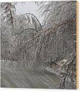 Spring Ice Storm Wood Print
