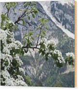 Spring In Alps Wood Print by Sola Deo Gloria