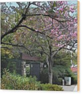 Spring In Bloom At The Japanese Garden Wood Print
