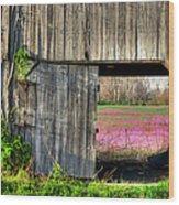 Spring In Kentucky Wood Print