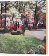 Spring In The Neighborhood Wood Print