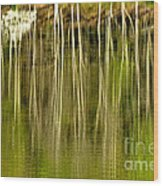 Spring Morning Reflections Wood Print