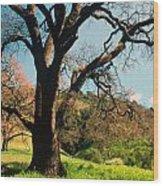 Spring Oak Wood Print by Kathy Yates