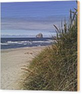 Spring On The Beach  Wood Print