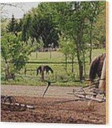 Spring Planting Wood Print