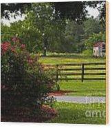 Spring Ranch Wood Print