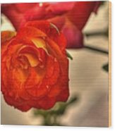 Spring Rose Wood Print