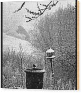 Spring Snowstorm 2012 Wood Print