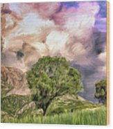 Spring Storm In Tuscany Wood Print