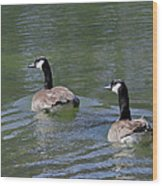 Spring Thaw Water Geese Wood Print