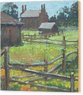 Spring Time In Nauvoo Wood Print