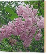 Spring Time Wood Print