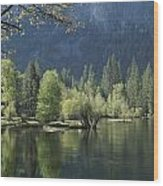 Spring View Of The Merced River Wood Print