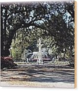 Spring Walk Through Forsyth Park Wood Print