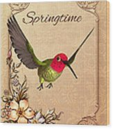 Springtime - Hummingbird Wood Print