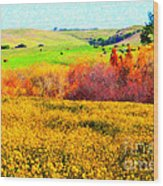 Springtime In The Golden Hills . 7d12402 Wood Print