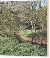 Springtime Meadow Wood Print