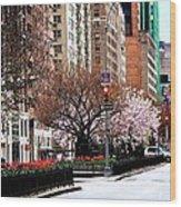 Springtime On Park Avenue Wood Print