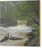 Springtime Waterfall Wood Print