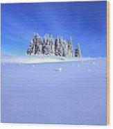 Spruce Grove In Winter Wood Print