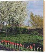 Sprung Spring Wood Print
