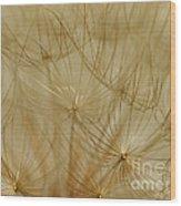 Spun Gold Wood Print