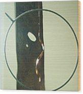 Spyra Gyra Wood Print