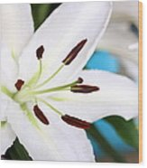 Square Lily On Blue Wood Print